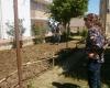 Orto Via Manfredini n.37 2014